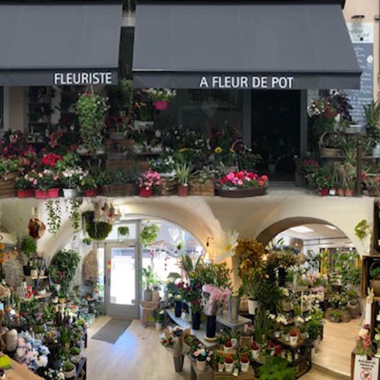 A fleur de pot votre Fleuriste à Die dans la Drôme